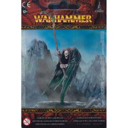 Vampire Counts Cairn Wraith
