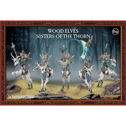 Wood Elves Sisters of the Thorn/Wild Riders
