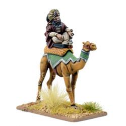 Mutatawwi'a Warlord on Camel ISC09 / SMF01a