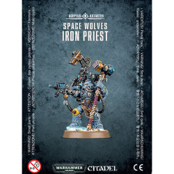 Space Wolves Iron Priest