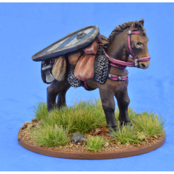 Pack Pony (Kite Shield) – LIV03