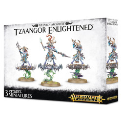 Tzeentch Arcanites Tzaangor Enlightened