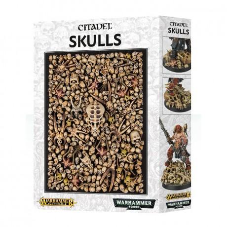 citadel-skulls-1