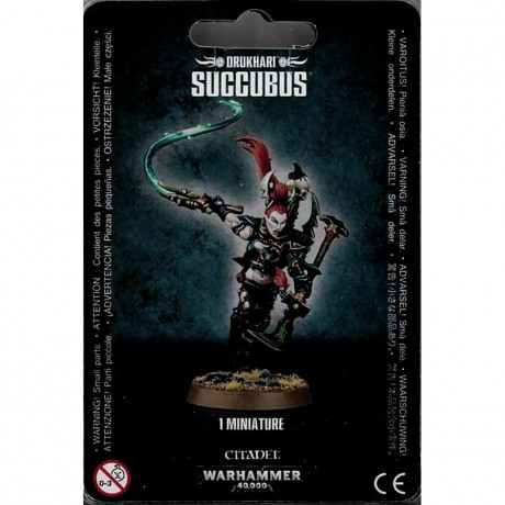 succubus-2