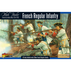 French-Indian War French Regular Infantry