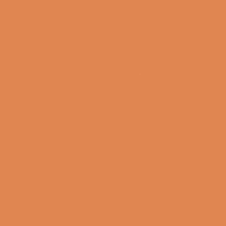 citadel-dry-golgfag-brown