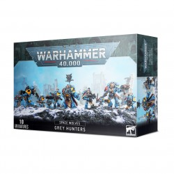 Space Wolves Pack Grey Hunters / Blood Claws / Wolf Guard