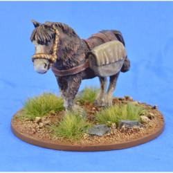 Pack Pony (Panniers) – LIV04