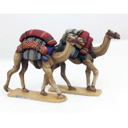 Baggage Camels – LIV10