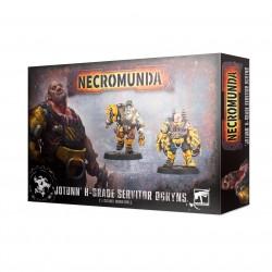 Necromunda: 'Jotunn' H-Grade Industrial Servitor Ogryns