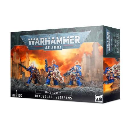 https___trade.games-workshop.com_assets_2021_01_TR-48-44-99120101284-Space Marines Bladeguard Veterans