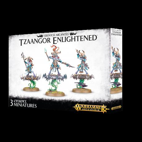 https___trade.games-workshop.com_assets_2019_05_Tzeentch-Arcanites-Tzaangor-Enlightened-2